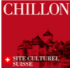 logo chateau chillon